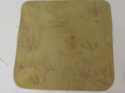 Naturally Dyed Cushion Cover 6