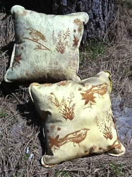 two cushions